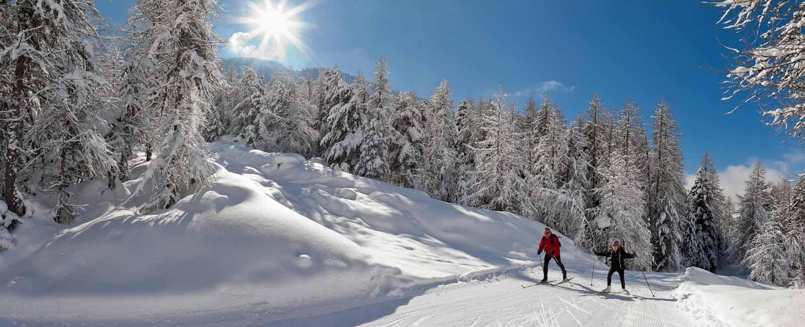 Randonnées raquettes chiens de traîneaux Hautes-Alpes
