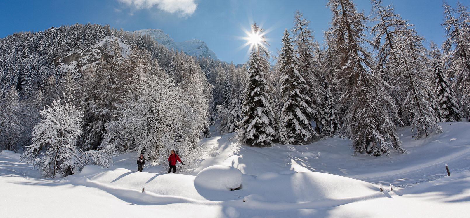 Ski de fond dans les Hautes-Alpes